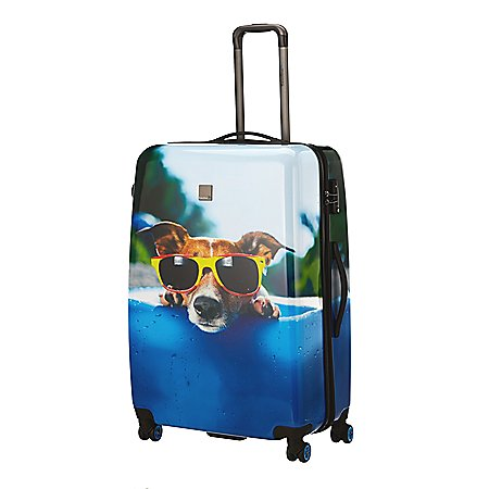 Saxoline Blue Happy Dog 4-Rollen-Trolley 69 cm